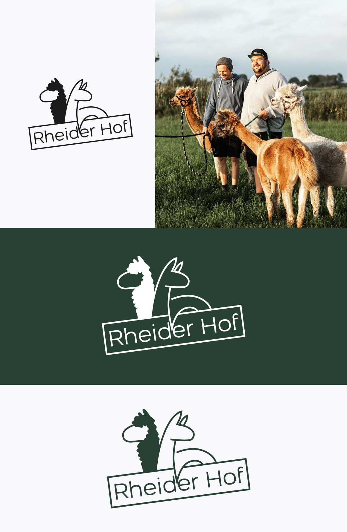 Rheider Hof Logo Vorschau